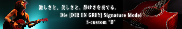 Die [DIR EN GREY] Signature Model Special Site